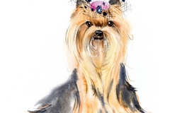 Hund mit einer Haube. Yorkshire-Terrier. Rosa Schleife und Haarkleid. Gezeichnete Illustration des Aquarells Hand