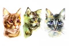 Maler Berlin, Rote Katze der europäischen Shorthair Katze, Kätzchen liegt auf dem weißen Hintergrund, lokalisiert, Aquarellmalerei des Handabgehobenen betrages.