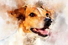 Digital-Aquarell von Jack Russell Terrier-Hund