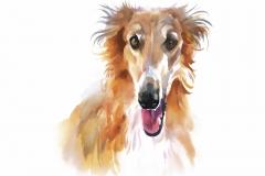 Collie-Tierhundeaquarell-Illustrationsvektor
